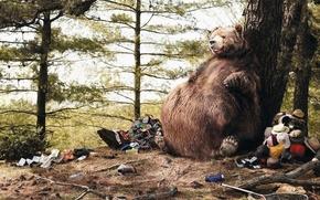Обои юмор, мусор, живот, Медведь