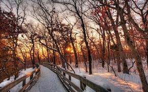 Картинка snow, зима, white, path, sunset, trees, красивые, солнце, sky, scenery, лес, облака, cool, beautiful, путь, ...