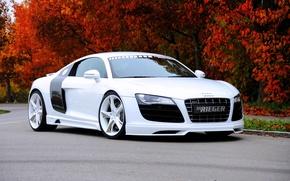 Картинка Audi, ауди, суперкар, 2010, Rieger