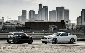 Картинка белый, город, чёрный, mustang, мустанг, ford, шевроле, форд, chevrolet, camaro ss, камаро