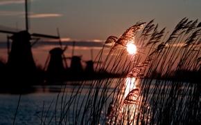 Картинка winter, sun, windmill, cold, atmosphere, holland