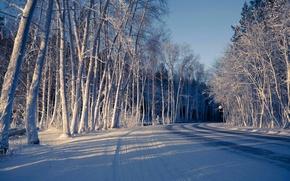 Картинка зима, дорога, лес, снег
