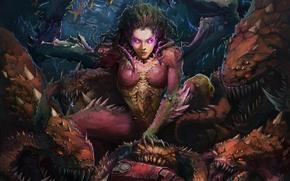Картинка крылья, арт, монстры, starcraft, Sarah Kerrigan