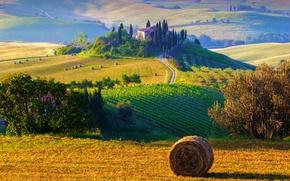 Картинка солнце, деревья, пейзаж, природа, восход, холмы, поля, утро, сено, Италия, trees, field, landscape, Italy, nature, …
