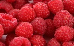 Обои ягоды, малина, еда