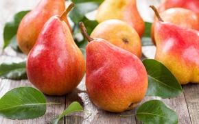Картинка листики, фрукты, груши