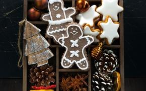 Картинка коробка, человечки, печенье, шишки, специи, пряники