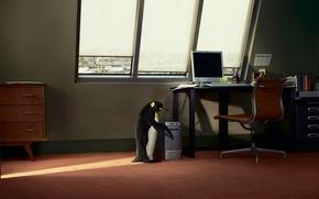 Обои пингвин, стол, компьютер, окно