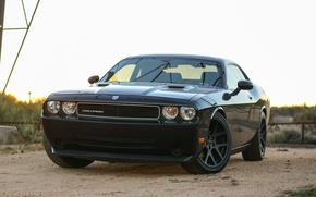Картинка Dodge, Challenger, black
