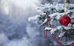 Картинка снег, праздник, игрушки, елка, новый год, happy new year, новогодние обои
