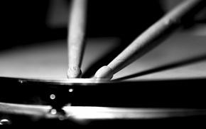 Картинка макро, чёрно-белое, палочки, барабаны
