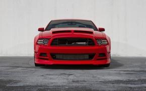 Картинка красный, mustang, red, ford, передок, форд мустанг, gt5.0