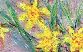 Обои Клод Моне, картина, Нарциссы, цветы
