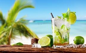 Картинка мохито, drink, mojito, cocktail, lime, коктейль, море, tropical, fresh, лайм