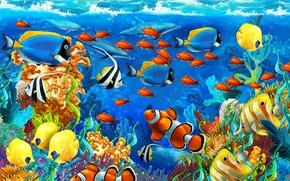 Картинка море, рыбы, водоросли, кораллы, дельфины