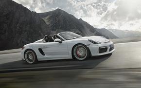 Картинка Porsche, порше, Boxster, Spyder, 2015, 981, бокстер