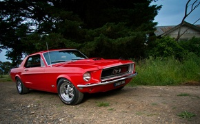 Картинка Mustang, Ford, red, Coupe, muscle car, '1968, GT 390