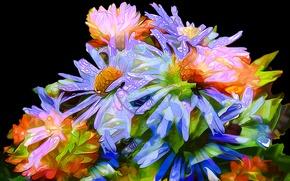 Картинка капли, линии, цветы, роса, букет, лепестки