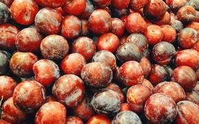 Картинка red, fruit, purple, magenta, plums, plum