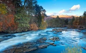 Картинка осень, лес, мост, река, холмы, поток