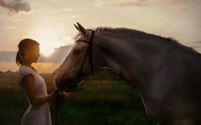 Обои девушка, закат, конь