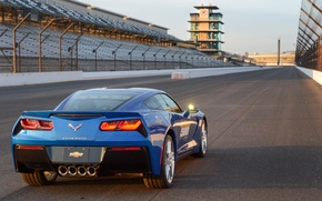 Обои chevrolet, corvette, stingray, c7, indy 500, pace car, задок