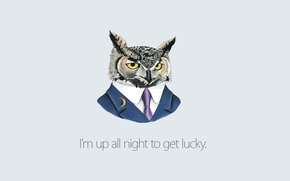 Обои галстук, Сова, фон, Daft Punk, костюм
