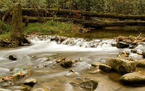 Обои горная река, брёвна, вода, течение, деревья