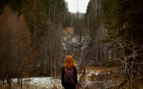 Картинка лес, боке, рыжеволосая девушка, осень.снег