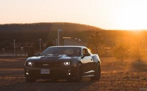Картинка Chevrolet, Camaro, Auto, Black, Sun, Muscle Car, ZL1, 2014