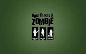 Картинка how to kill zombie, как убить зомби