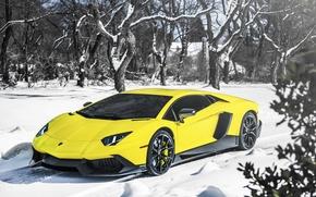 Картинка Lamborghini, Snow, Yellow, Aventador, Supercar, LP720-4, 50 Anniversario Edition