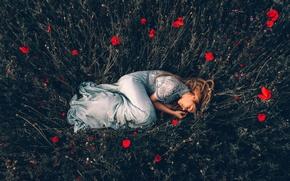 Картинка девушка, маки, сон, Adam Bird
