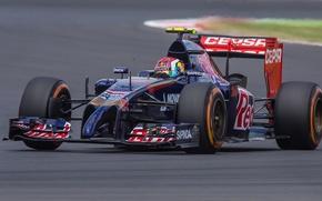 Картинка Daniil Kvyat, Toro Rosso-Renault