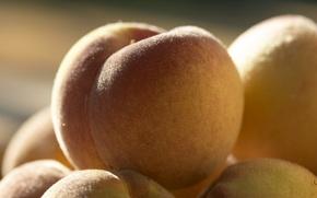 Картинка фрукт, фрукты, вкуснятина, персики, плод, МАКРО, мохнатые, ПЕРСИК, ПОПКА)