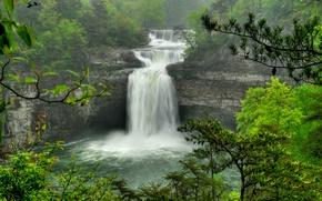 Картинка лес, деревья, ветки, скалы, водопад, поток, DeSoto Falls, Alabama