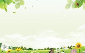 Картинка лето, хорошее настроение, красивые обои, зеленый луг, цветы на лугу