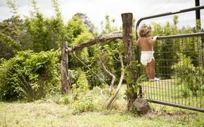 Обои любопытство, забор, зелень, кудряшки, ребенок, природа, сад