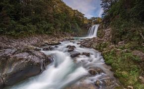 Картинка лес, река, камни, водопад, Новая Зеландия, New Zealand, Tawhai Falls