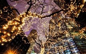 Картинка свет, деревья, город, огни, здания, небоскребы, вечер, освещение, подсветка, Чикаго, США, Иллинойс, гирлянды, Chicago, Illinois