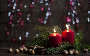 Картинка ветки, дождь, праздник, новый год, рождество, ель, свечи, ёлка, украшение, орехи, корица, хвоя, фундук