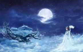 Обои Луна, свиток, кимоно, храм, девушка, ночь, сакура, звезды, облака