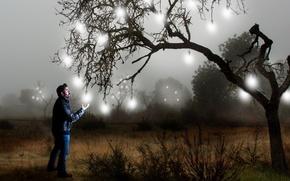 Картинка дерево, человек, ситуация, лампочки