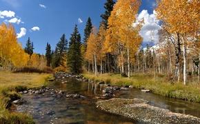 Картинка осень, деревья, пейзаж, река