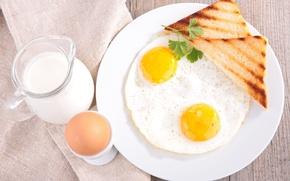 Картинка зелень, яйца, завтрак, молоко, хлеб, eggs, bread, milk, greens, Breakfast