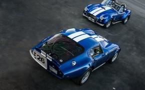 Картинка классика, легенда, автомобили, 1965, 1967, спортивные, гоночные, Shelby Cobra, Daytona Coupe