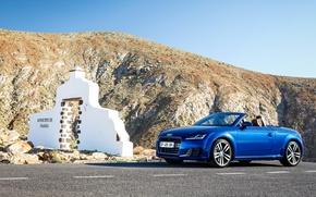 Картинка Audi, ауди, купе, Coupe, 2014, TTS
