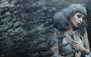 Картинка девушка, фантазия, лаванда, Bella Kotak