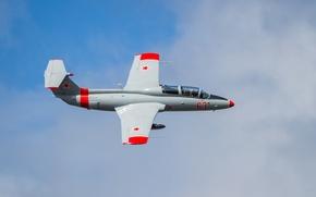 Обои самолёт, учебно-тренировочный, «Дельфин», L-29 Delfin