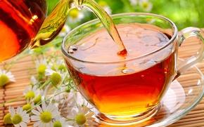 Картинка цветы, блюдце, ромашки, стекло, чай, чашка, циновка